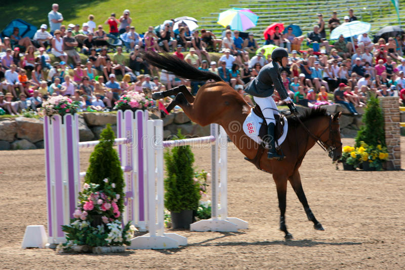 Download Horse Rider At The Bromont Jumping Competition Editorial Photo - Image of breed, event: 20602621