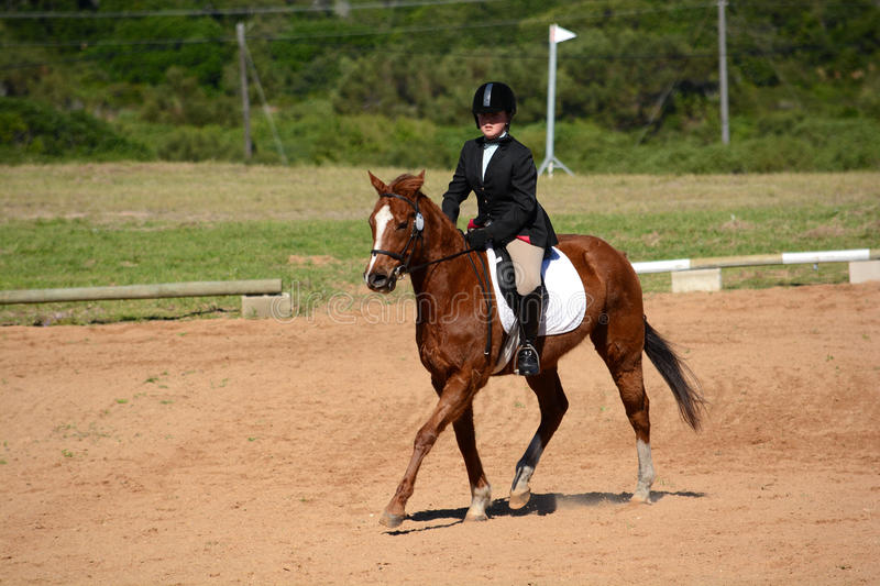 Horse and rider in dressage arena. A young teenage Caucasian female rider riding her chestnut horse trotting in the dressage arena outdoors stock photography