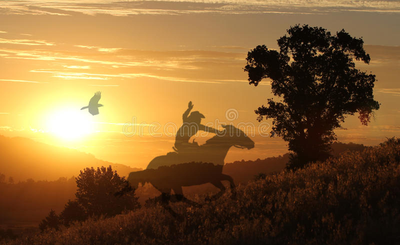Horse and rider on a golden meadow. A silhouette of a cowgirl at sunset riding her horse in a meadow with a golden background and a crow flying above stock image