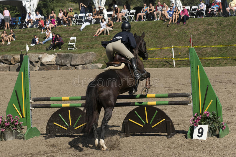 Horse with rider jumping. Rear side view of horse and rider making a jump during competition at the bromont concours June 12, 2016 stock photography