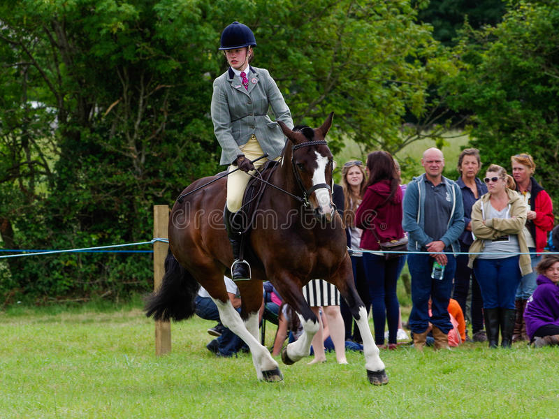 Horse rider in the ring. A young woman riding at the North Lonsdale Agricultural show stock photos