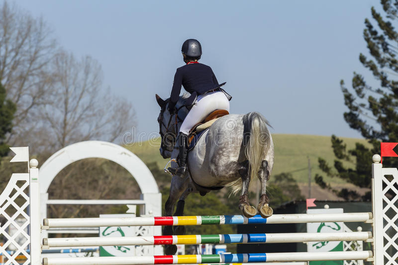 Horse Rider Show Jumping Action. Rider horse action closeup at equestrian show jumping stock photo