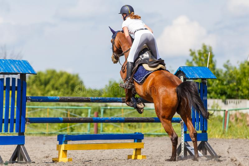 Horse rider woman on show jumping competition. Young horse rider woman jumping over the obstacle on show jumping competition. Equestrian sport background with stock photo