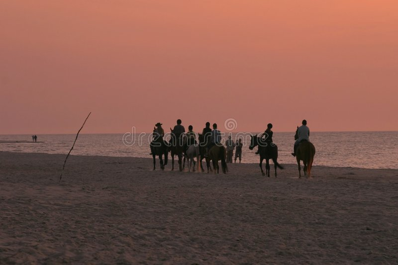 Download Horse riders on beach stock image. Image of coastline - 1015231