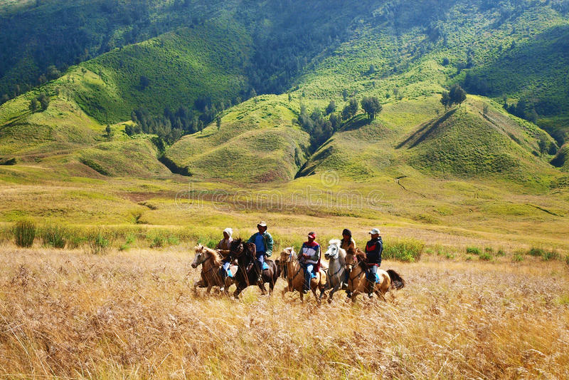 Horse Riders in Savana royalty free stock image