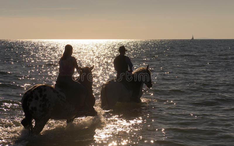 Horse riders in the sea royalty free stock image