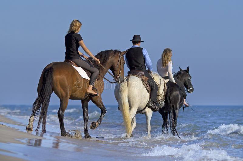 Horse riders in the sea stock photos