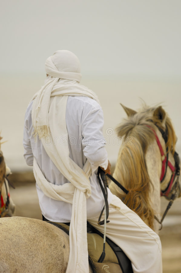 Download Horse riding stock image. Image of ride, storm, desert - 4013865