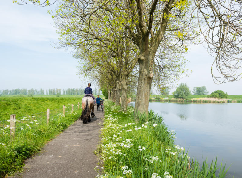 Horse riding along the water stock photo