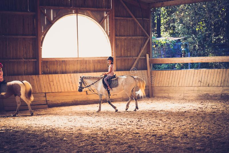 A young girl riding a horse in arena. royalty free stock photos