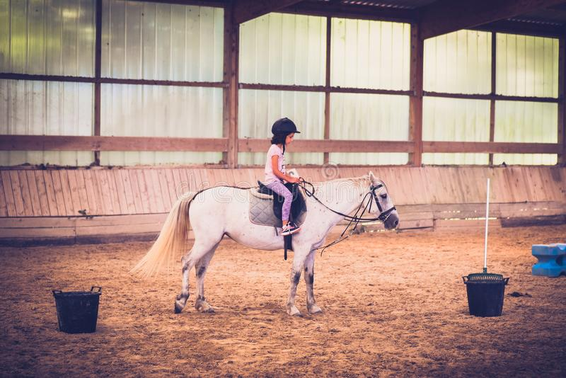 A young girl riding a horse in arena. stock photos