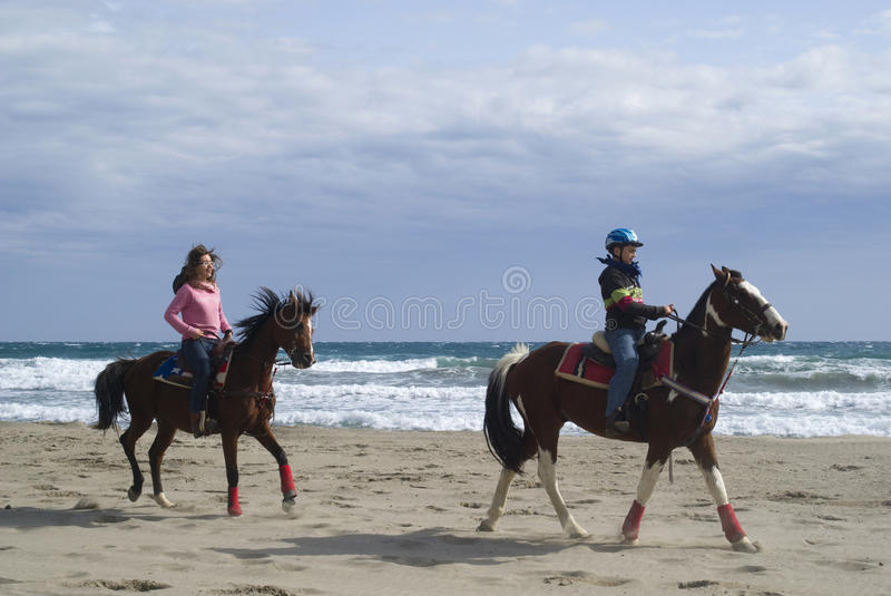 Horse riding on the beach royalty free stock image