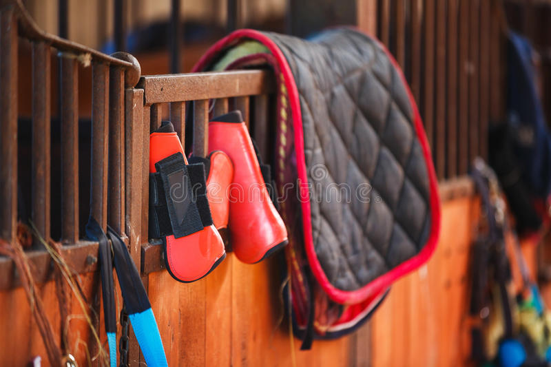 Horse riding equipment. Is hanging on a door in a stable stock image