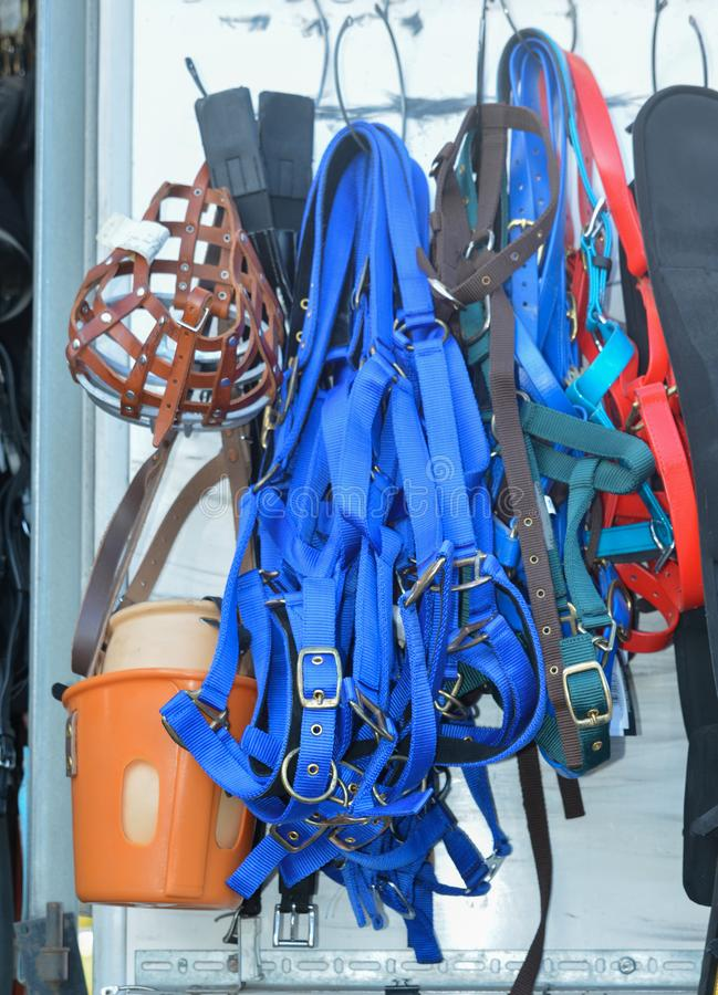 Horse riding equipment. Horse riding equipment for sale. halter equipment royalty free stock image