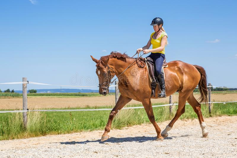 Horse riding on a field royalty free stock images