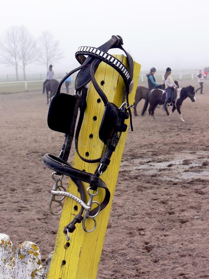 Horse riding item stock photos