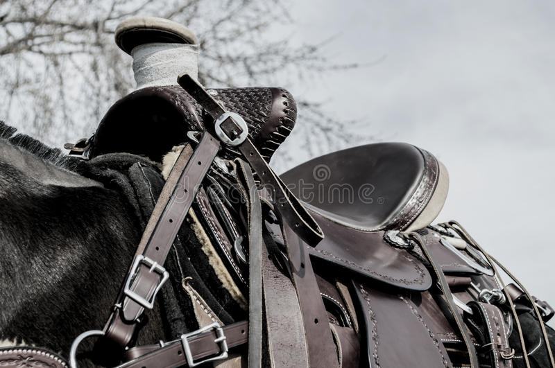 Horse saddle,leather,blanket. Close-up of a leather horse saddle on a horse stock photos