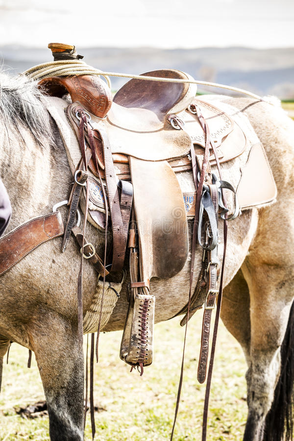 Horse saddle on the ranch stock photo