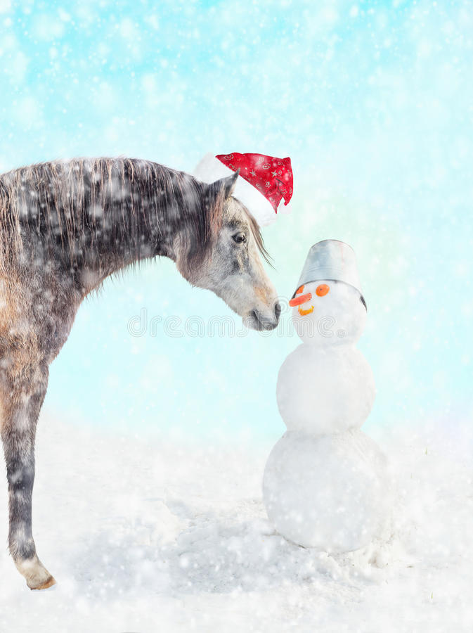 Horse in Santa hat and snowman with a bucket on his head and carrot nose in winter snow royalty free stock photography