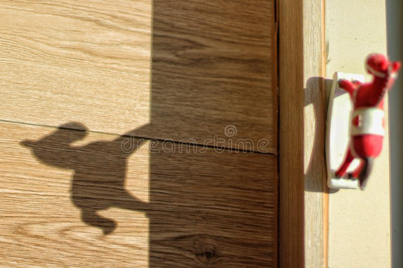 Horse shadow royalty free stock photography
