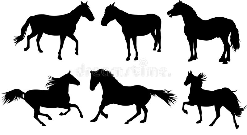 Download Horse Silhouette Collection Stock Vector - Image: 8490857