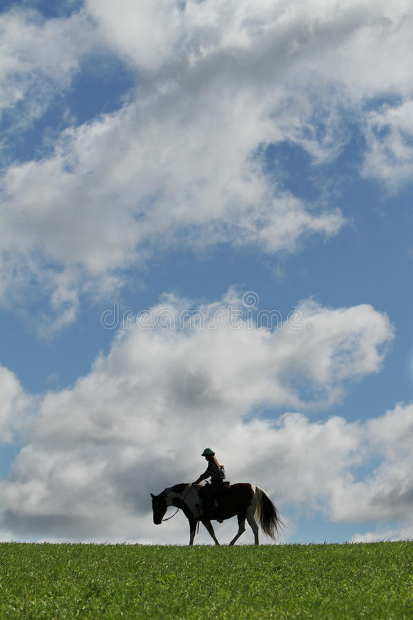 Download Horse and sky stock image. Image of country, ride, profile - 22215449