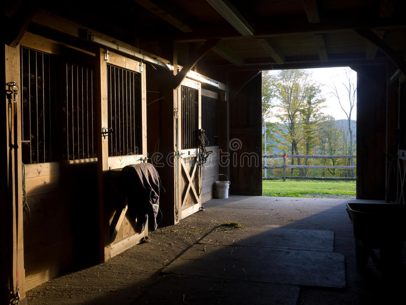 Horse Stable. Sunlight pours into a handsome horse stable