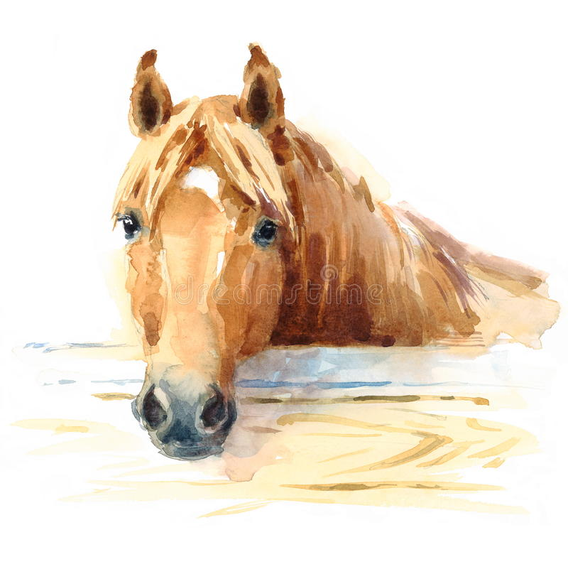Horse in Stable Watercolor Animal Illustration Hand Painted vector illustration