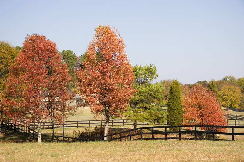 Download Horse Stables, Fences In Autumn Stock Photo - Image: 4520574