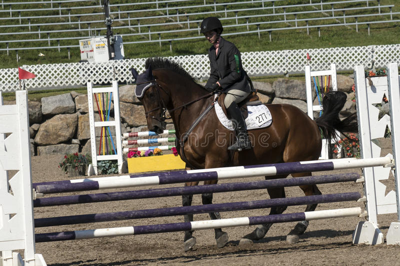 Horse stop at hurdle. Picture of rider and brown horse stop at hurdle during competition at the bromont concours June 12, 2016 royalty free stock image