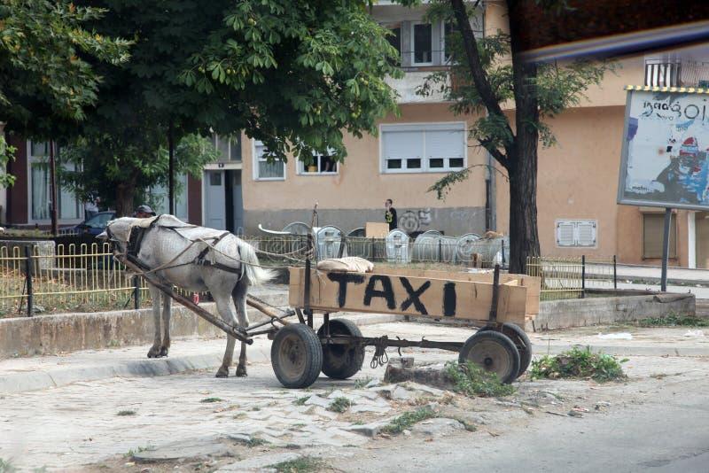 Horse taxi in Debar, Macedonia royalty free stock photo