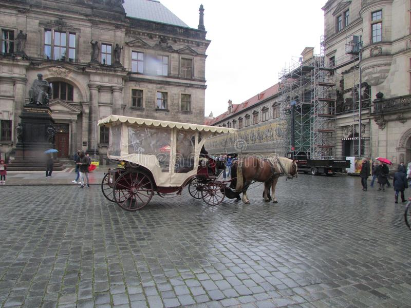 A horse with a tourist cart, Dresden, Germany. stock image