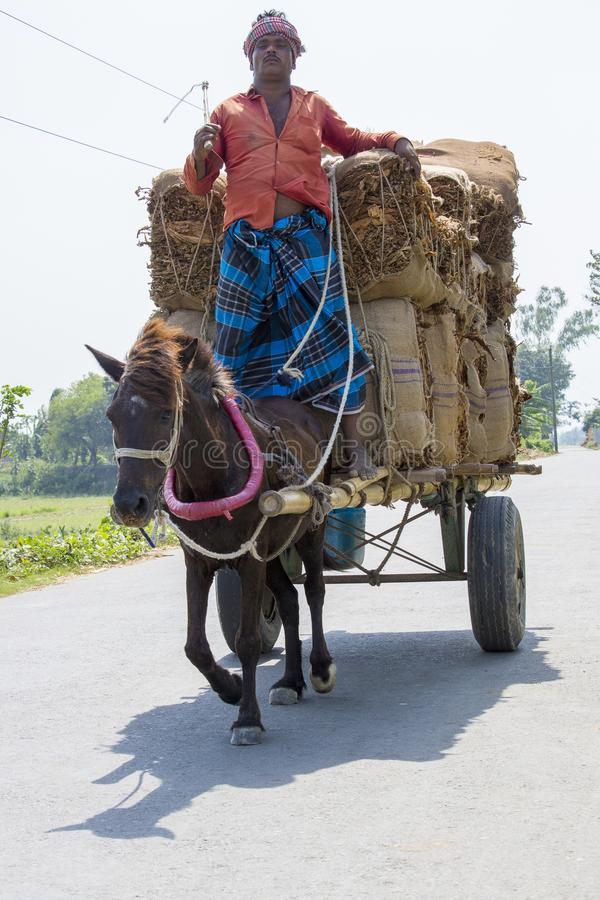 Horse transport is very popular type of transport in our country. It is used in occasion. So, it is our culture. It is used as an. A taana Horse Transport is a stock photography