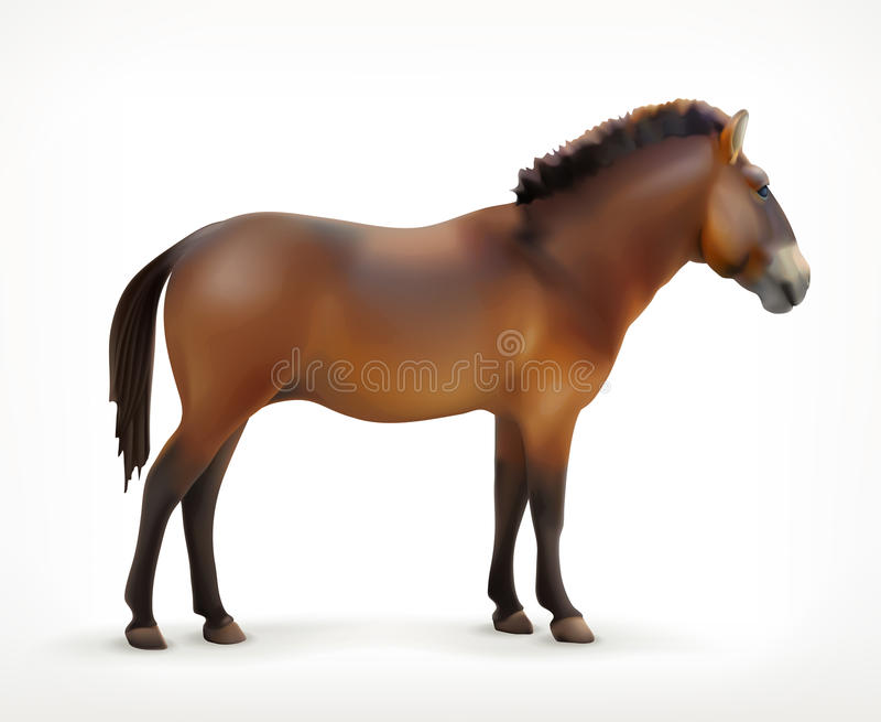 Horse, vector icon royalty free illustration