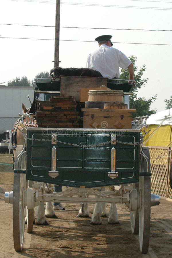 Download Horse and wagon stock image. Image of fairgrounds, driver - 166869