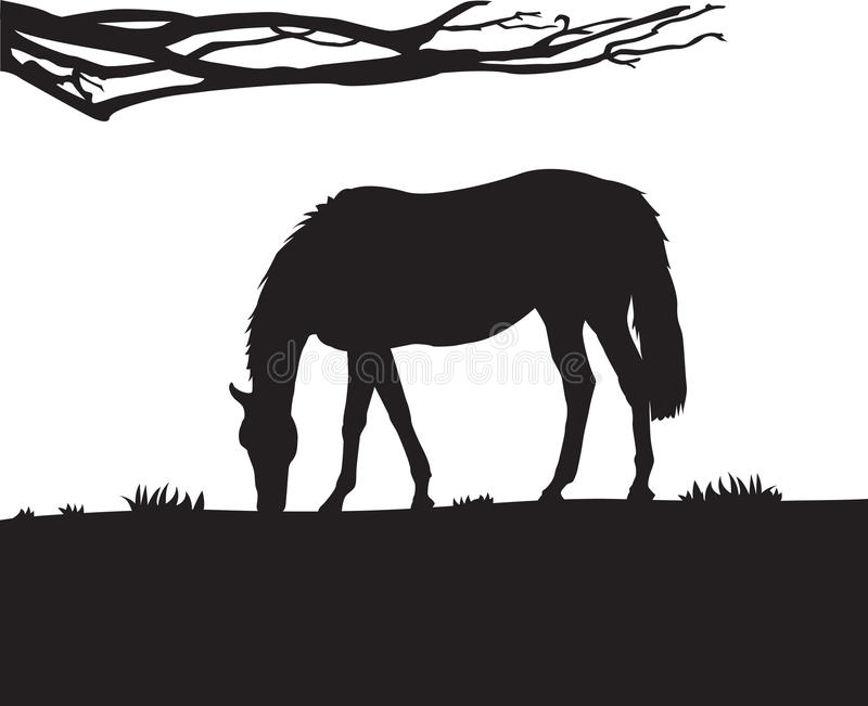 Horse Wall Decal stock illustration