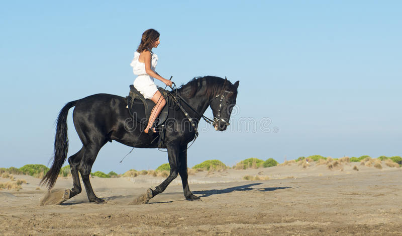 Horse woman on the beach royalty free stock image