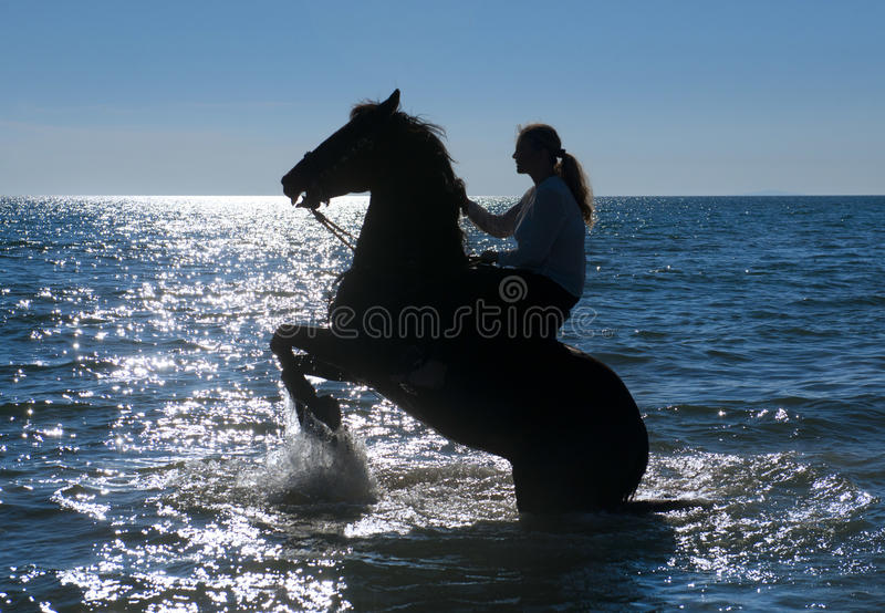 Horse woman in the sea royalty free stock photography