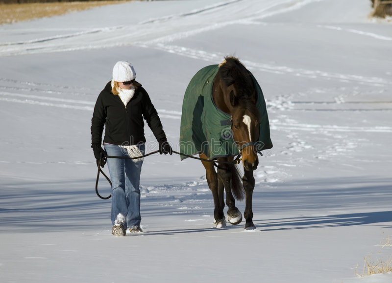 Horse and woman in snow royalty free stock photo