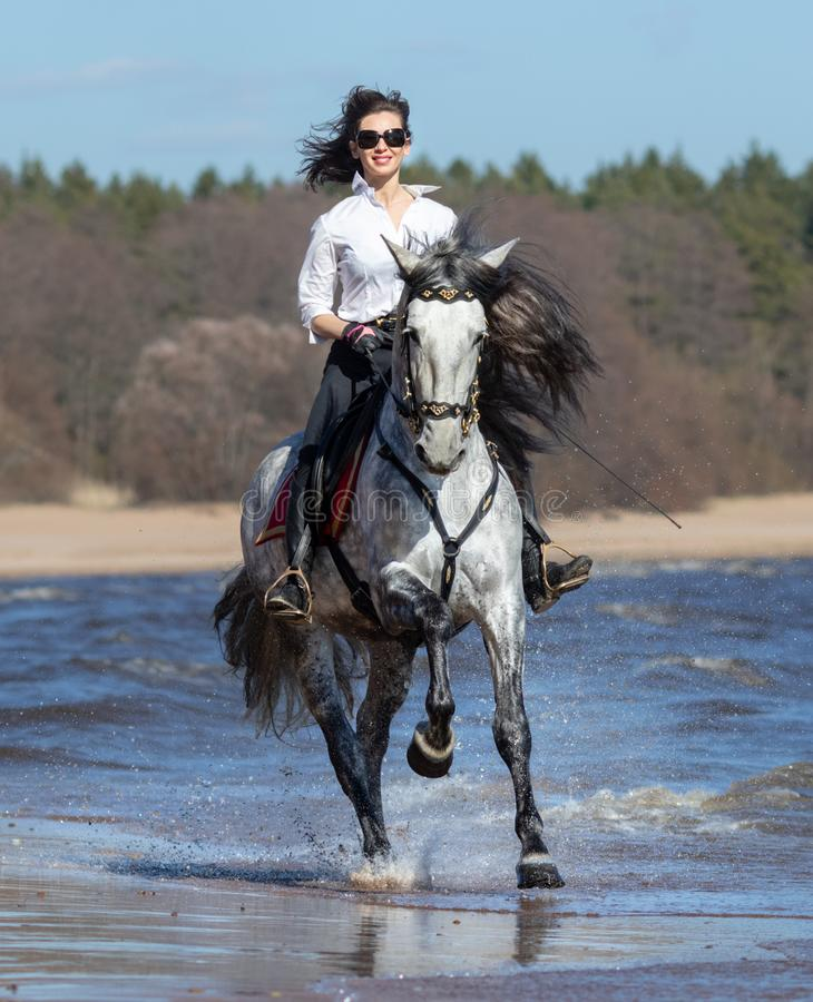 Horse woman and Spanish horse speed running into sea with splashes royalty free stock photo