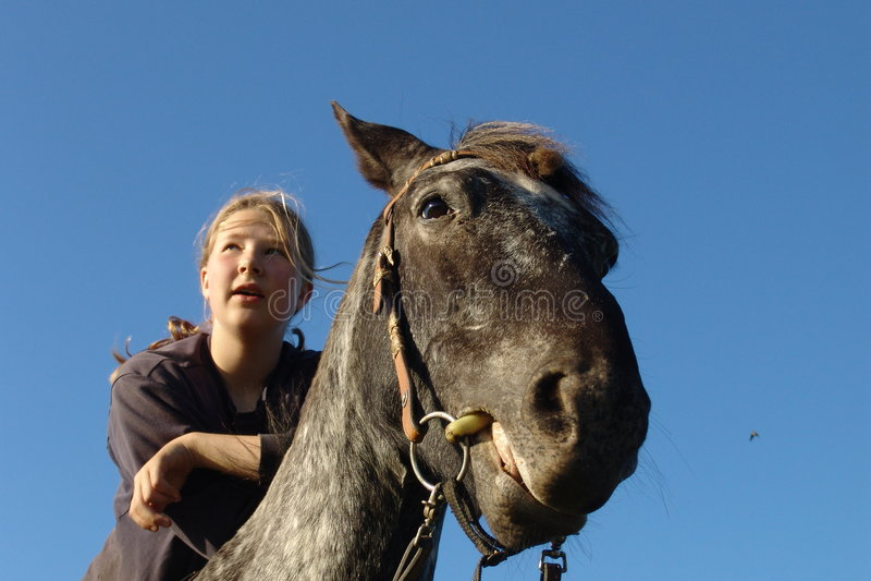 horseandgirl obrazy royalty free