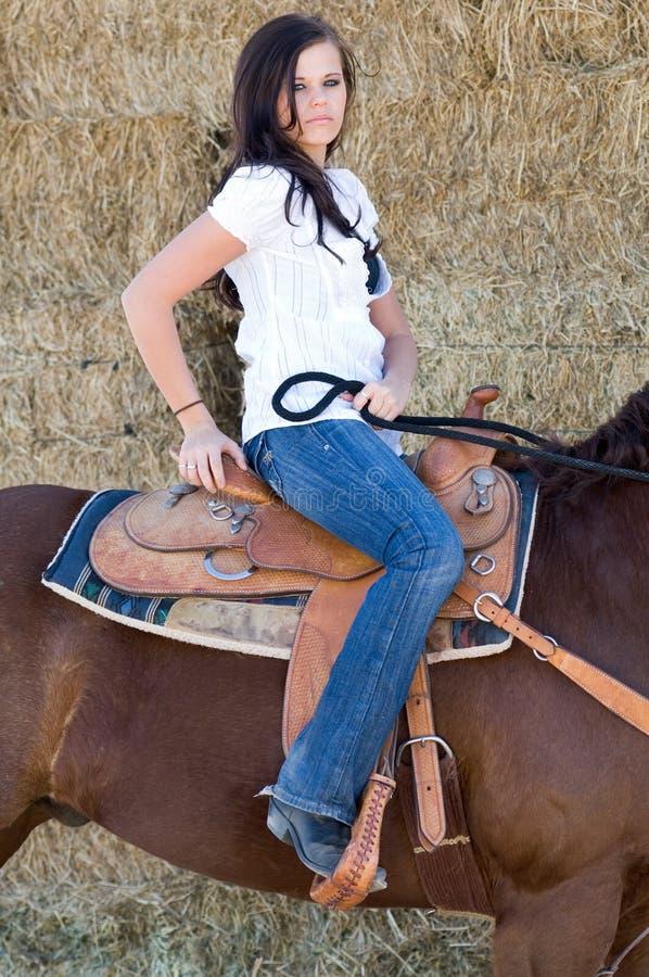 horseback женщина стоковые изображения rf