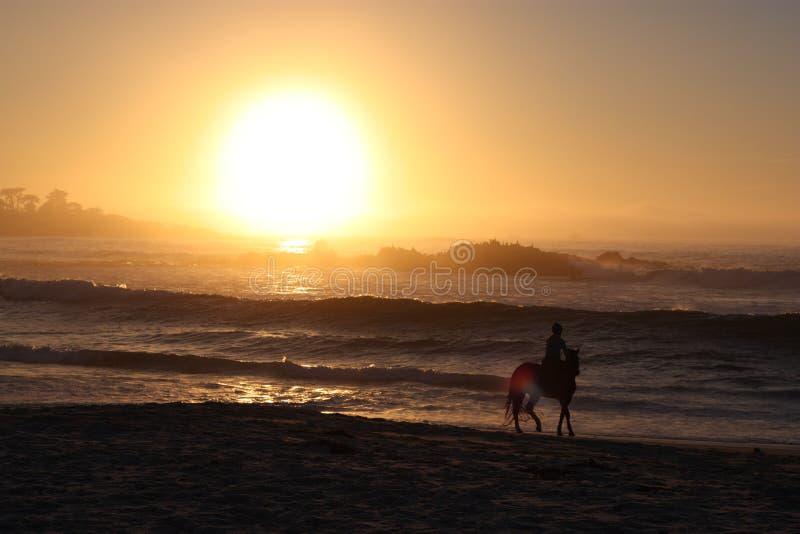 Horseback het berijden en strandzonsondergang stock afbeeldingen