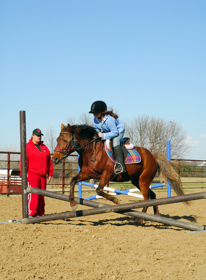 Horseback het berijden les stock foto's
