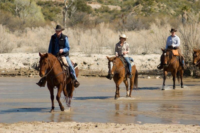 Horseback jazda w pustyni fotografia royalty free