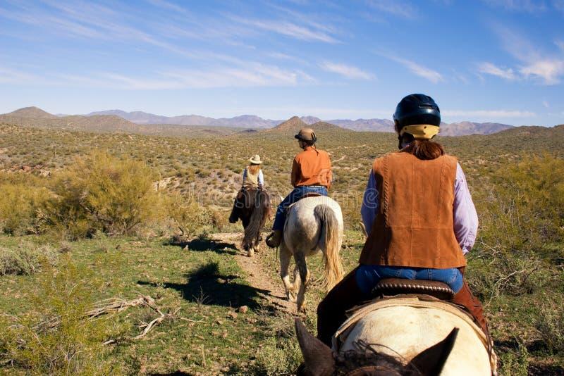Horseback jazda w pustyni zdjęcie royalty free
