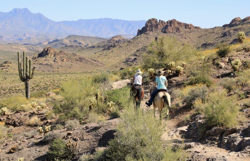 Horseback jazda w pustyni obrazy stock