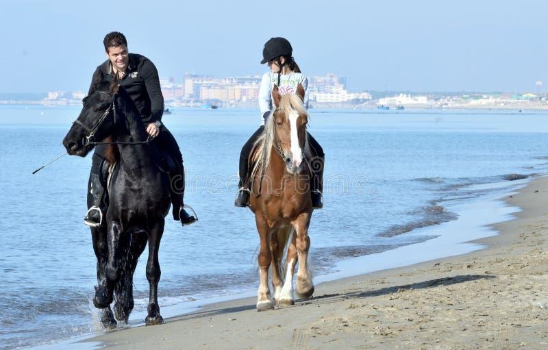 Horseback, overzees, strand, ontspant, hemel stock foto