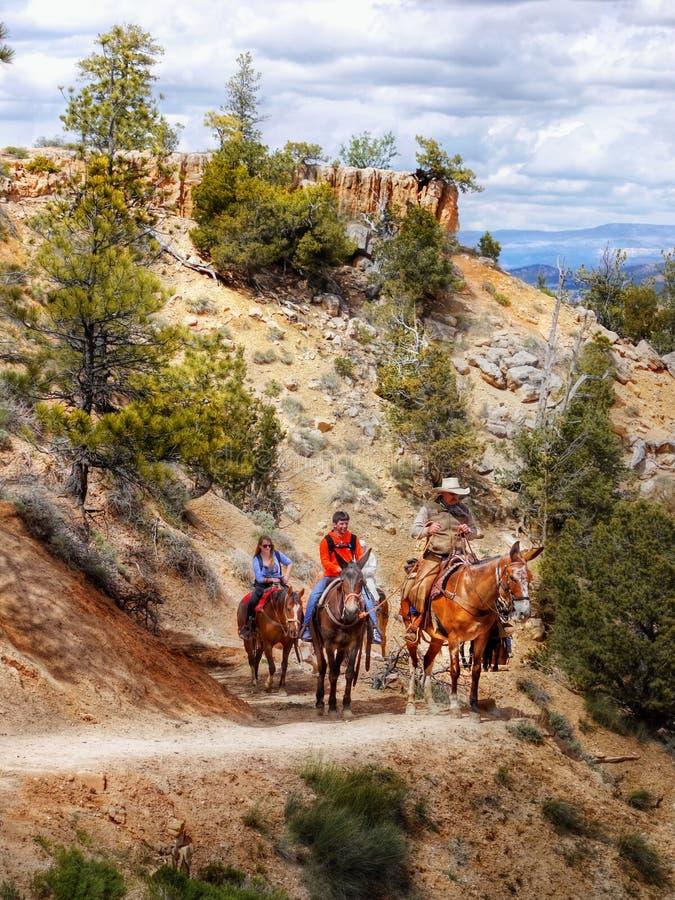 Horseback riders, Bryce Canyon. Horseback riders in Bryce Canyon, National Park landscape. Utah royalty free stock image