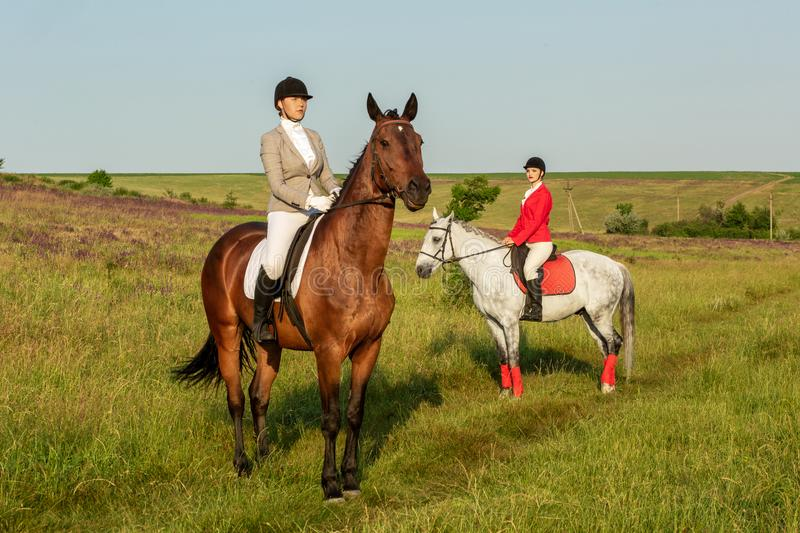 Horseback riders. Two attractive women ride horses on a green meadow stock photos